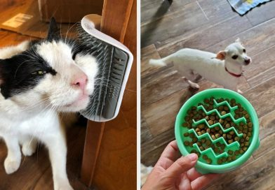 43 Problem-Solving Products That Pet Owners Truly Love – BuzzFeed